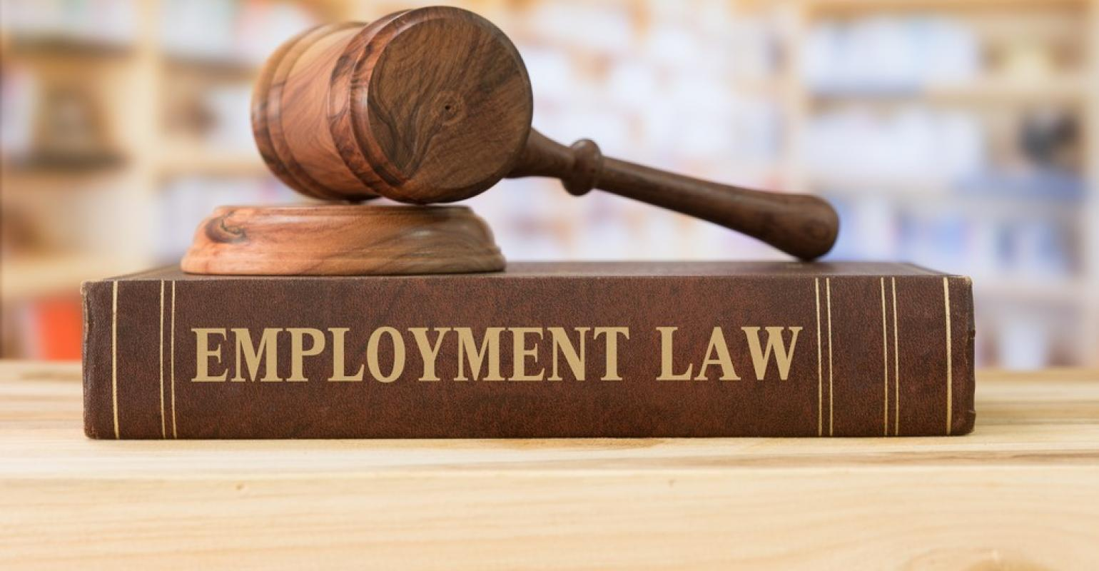 Best Consulting Firm for Legal Funds and Employment